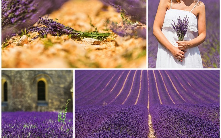 Provence-2
