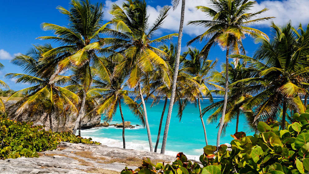 Gdzie na wakacje w czerwcu barbados