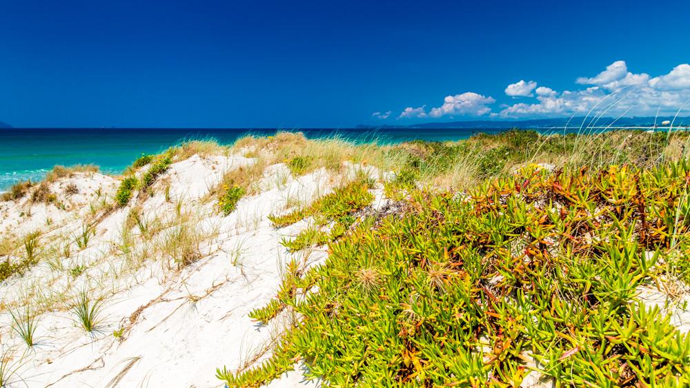 nowa-zelandia-bay-of-island-10