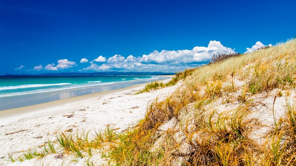 nowa-zelandia-bay-of-island-4