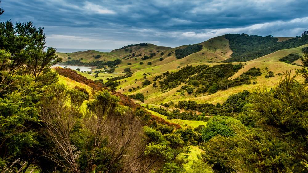 nowa-zelandia-coromandel-10