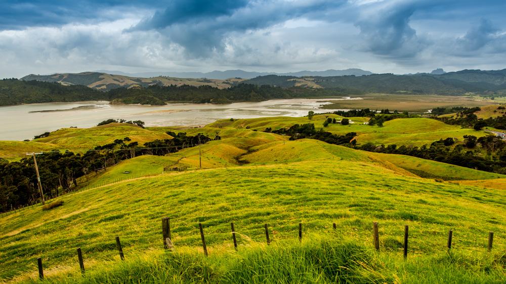 nowa-zelandia-coromandel-12