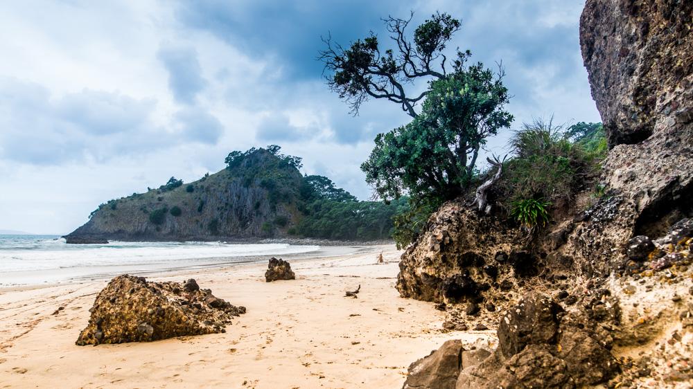 nowa-zelandia-new-chums-beach-4
