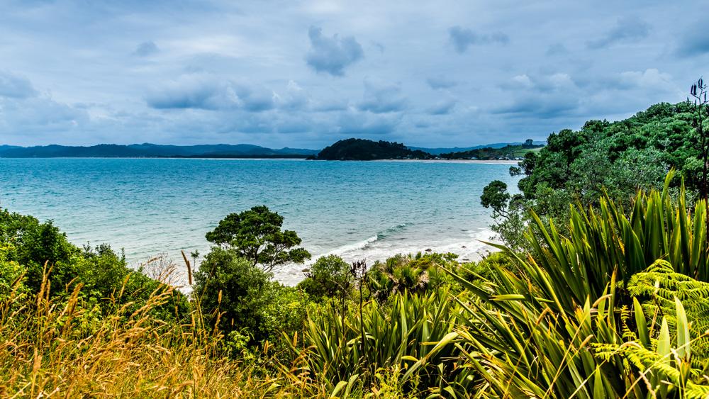 nowa-zelandia-new-chums-beach-6