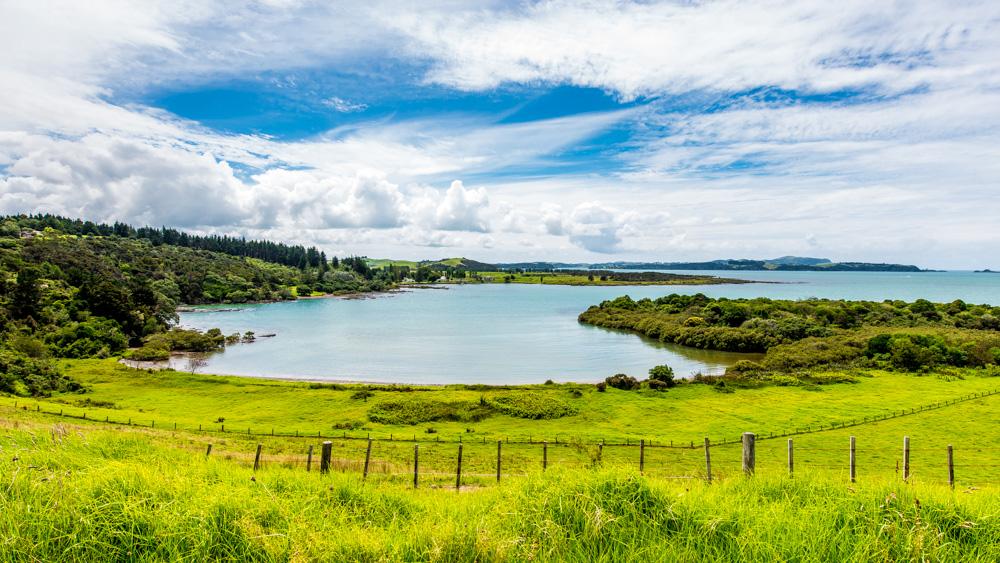 nowa-zelandia-pahia-8