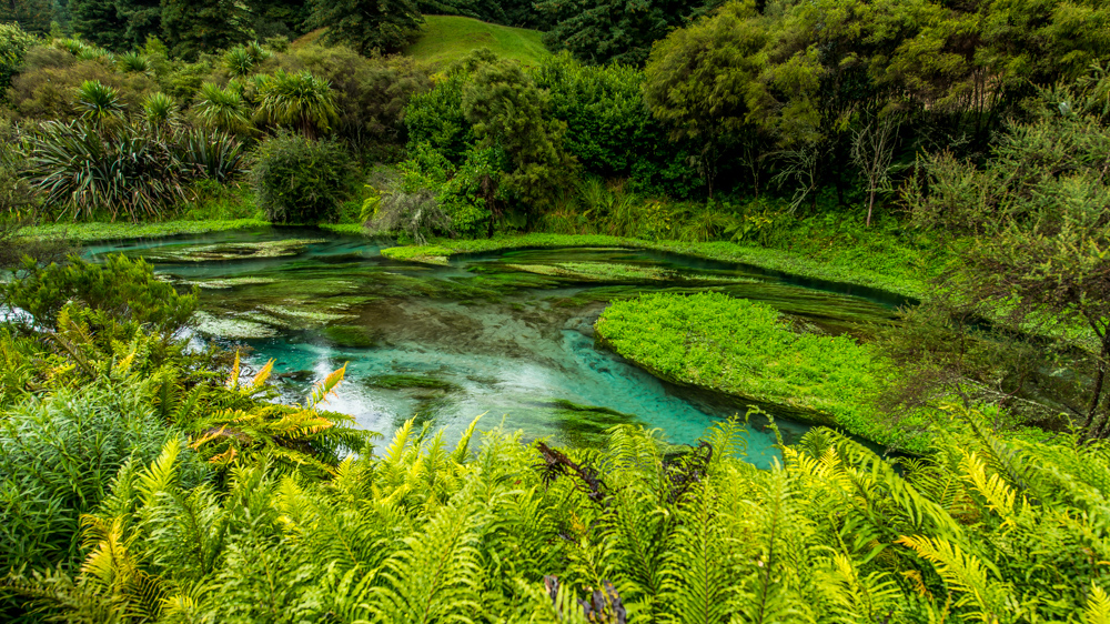 Wai-o-tapu-Nowa-Zelandia-1