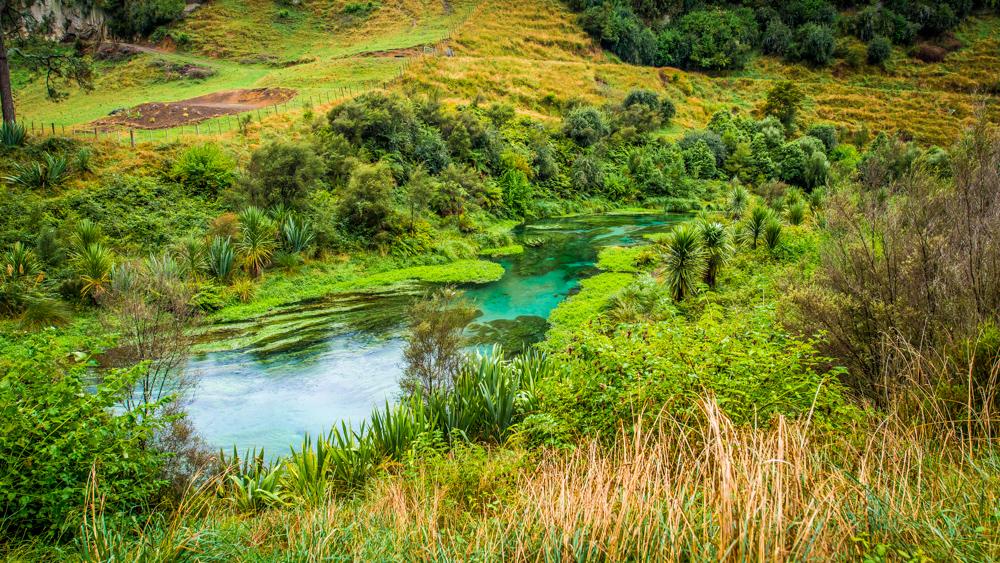 Wai-o-tapu-Nowa-Zelandia-4