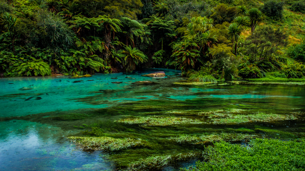 Wai-o-tapu-Nowa-Zelandia-5