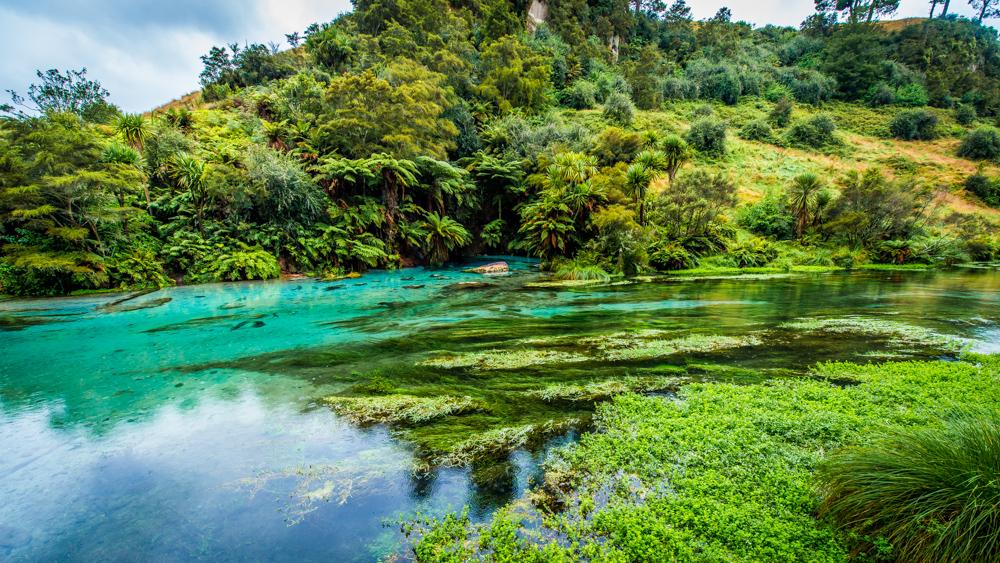 Wai-o-tapu-Nowa-Zelandia-6