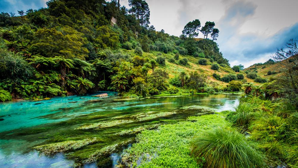Wai-o-tapu-Nowa-Zelandia-7