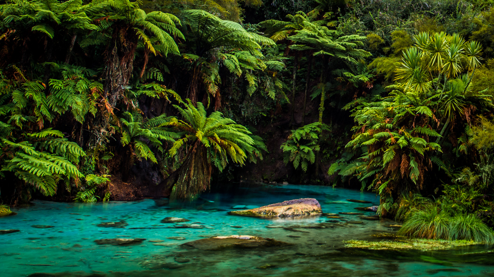 Wai-o-tapu-Nowa-Zelandia-8