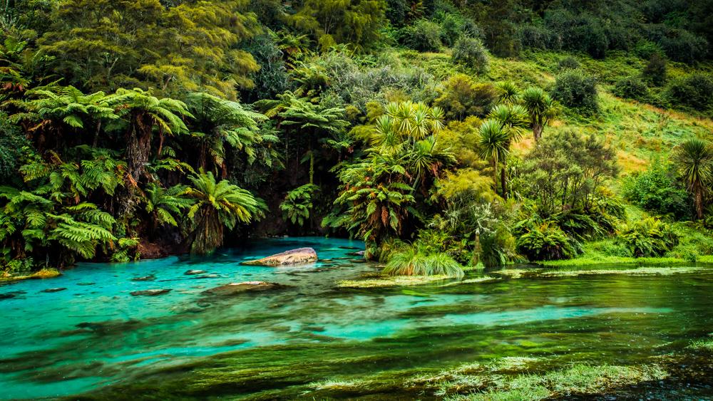 Wai-o-tapu-Nowa-Zelandia-9