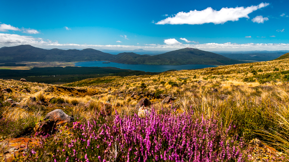 Tongariro Crossing-41