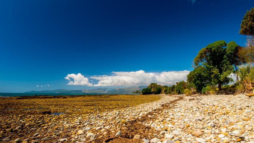 nowa-zelandia-abel-tasman-park-10