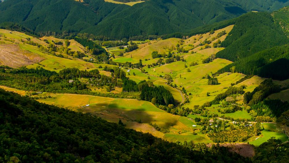 nowa-zelandia-abel-tasman-park-2