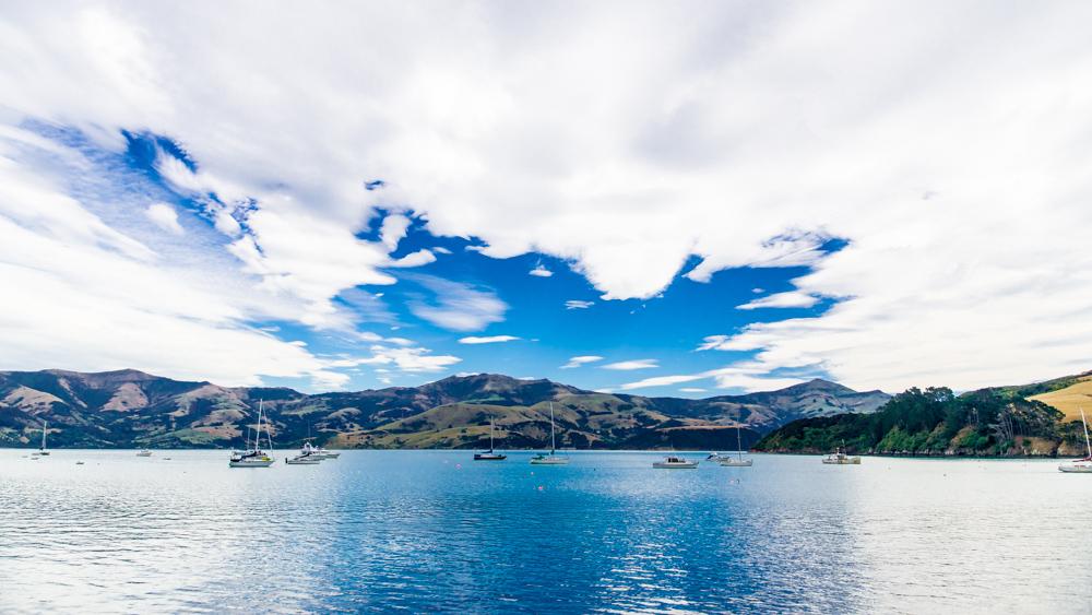 Nowa Zelandia Akaroa-8