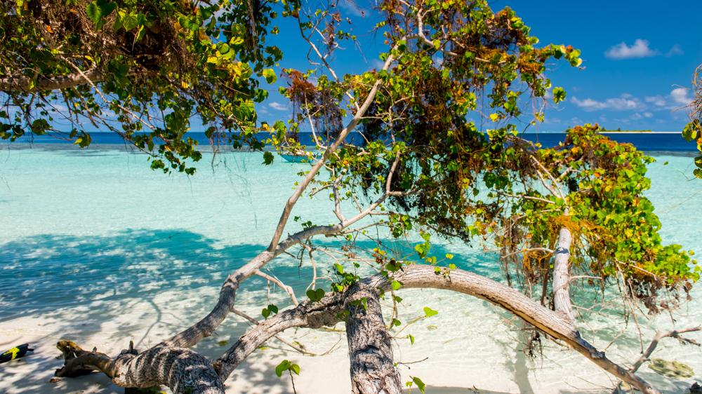 Malediwy Nilandhoo-50