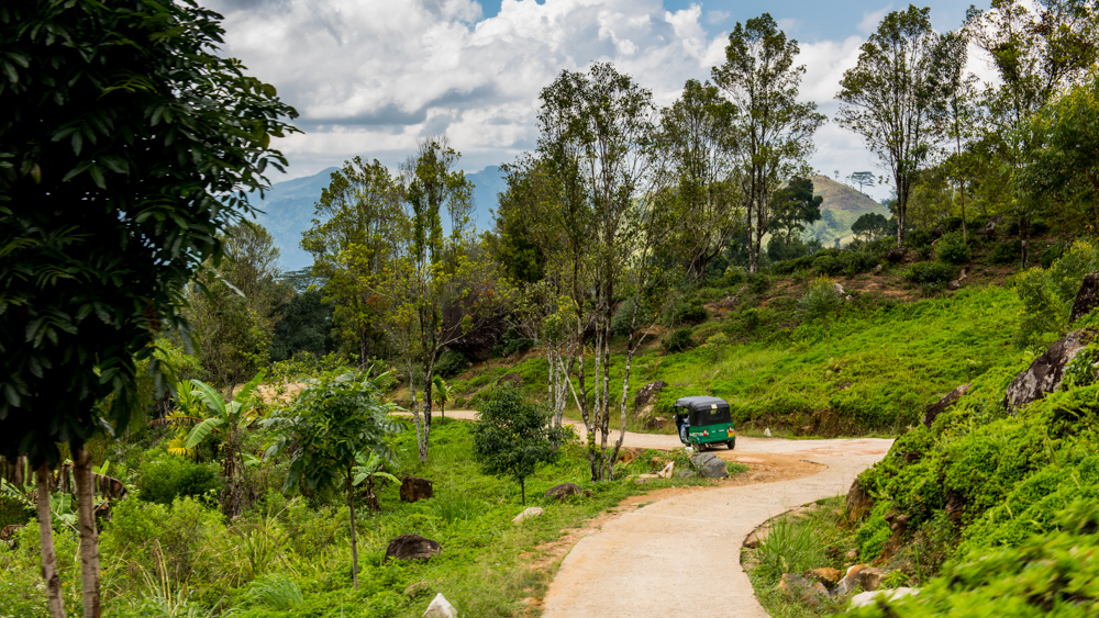 Sri Lanka Sembuwatte Lake-10