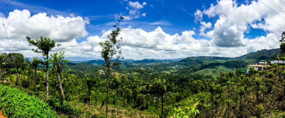 Sri lanka Kandy-17