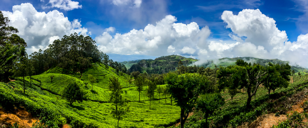 Sri lanka Kandy-20