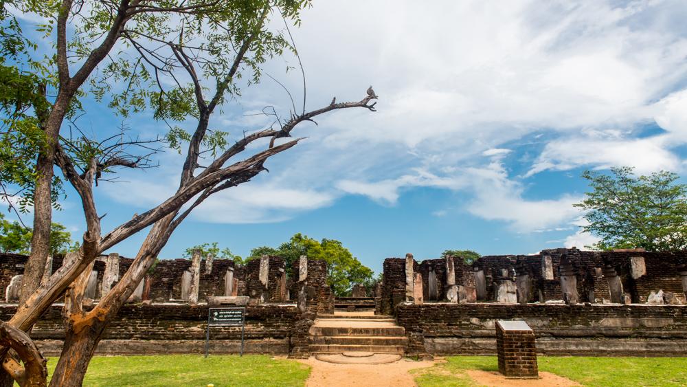 Sri lanka Polonnaruwa-24