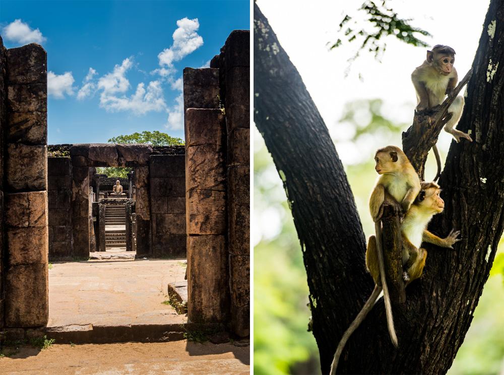Sri-lanka-Polonnaruwa-36