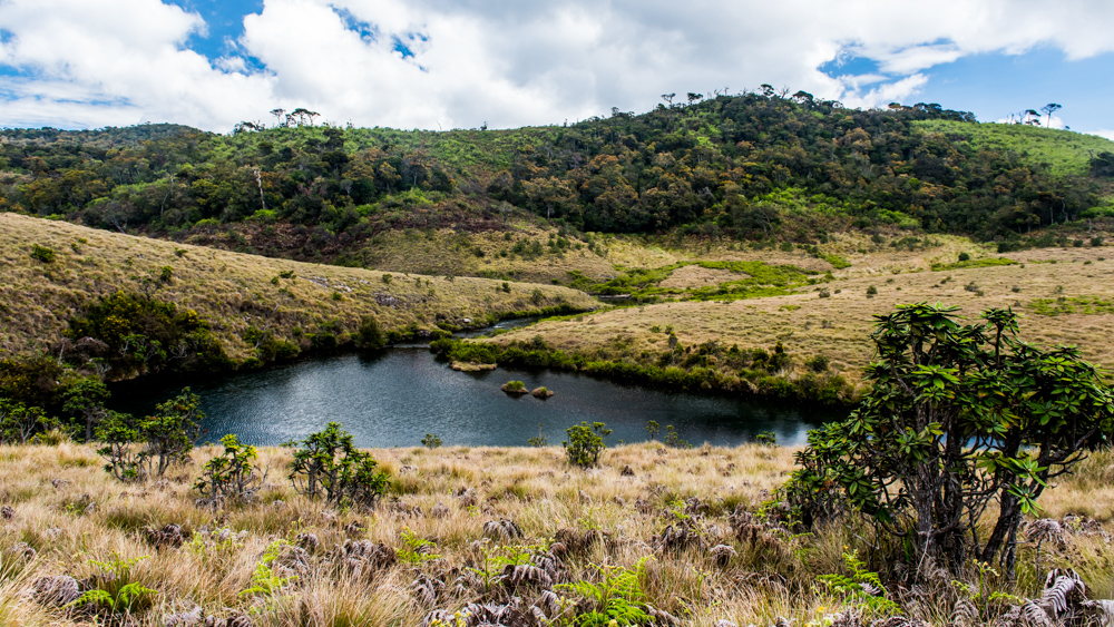 Horton Plains-35