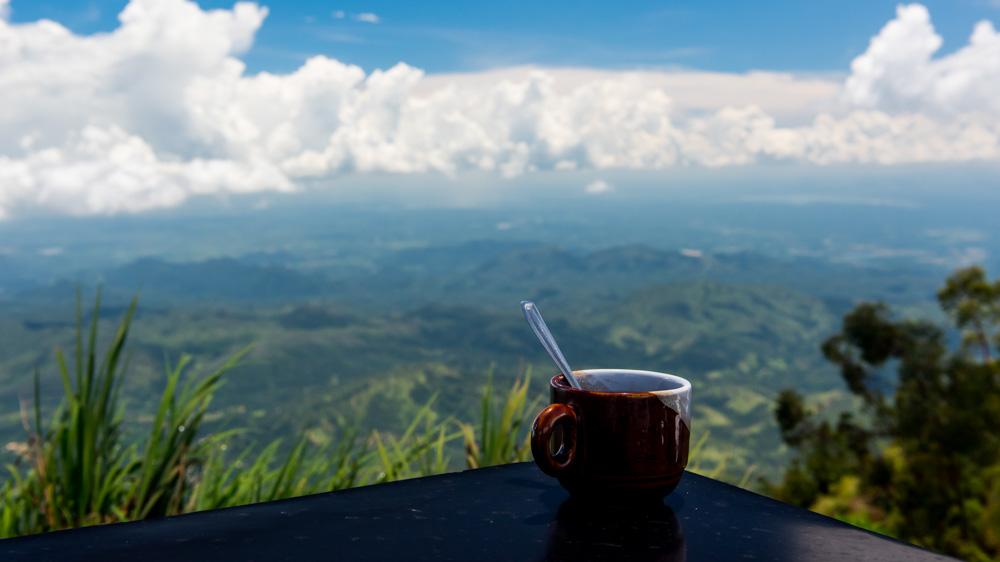 Plantacje herbaty Sri lanka-12