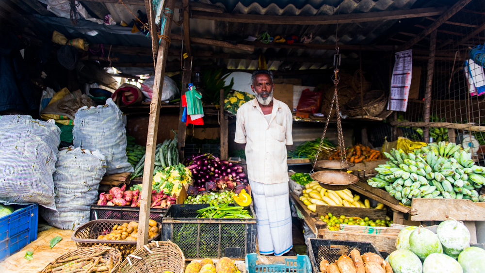 Plantacje herbaty Sri lanka-30