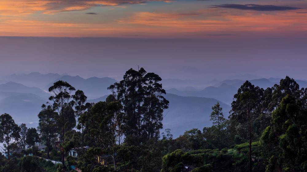 Haputale Sri Lanka-16