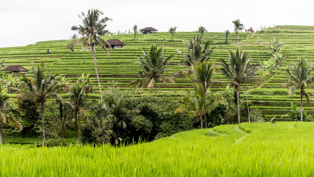 Najpiekniejsze miejsca na Bali-11