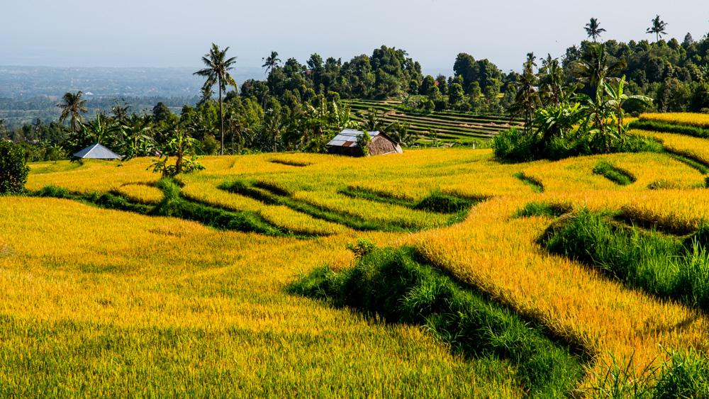 Najpiekniejsze miejsca na Bali-25