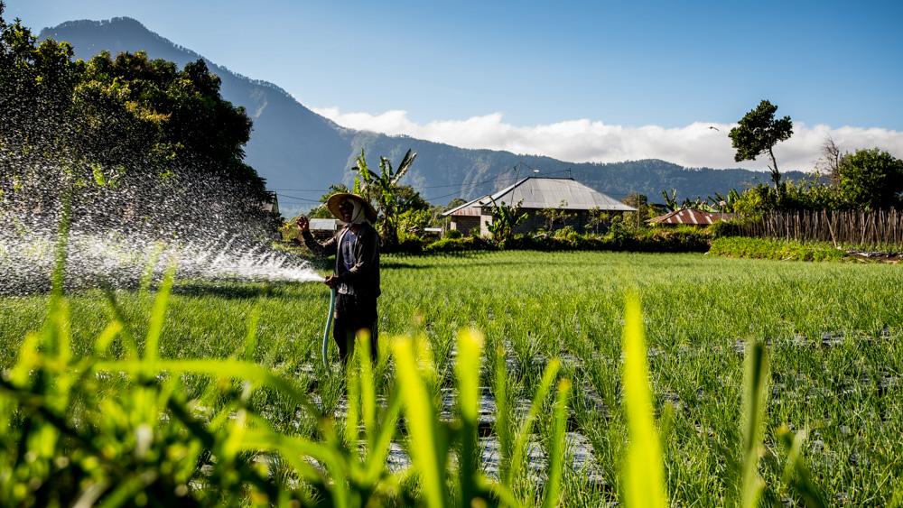 Najpiekniejsze miejsca na Bali-37