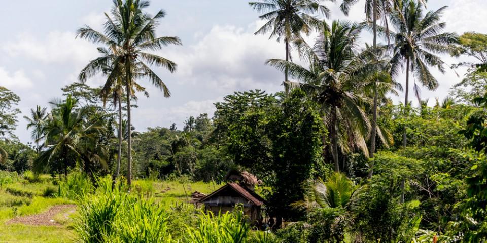 Najpiekniejsze miejsca na Bali-43