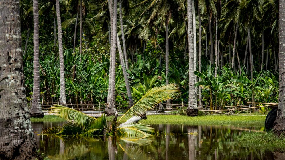 Najpiekniejsze miejsca na Bali-64