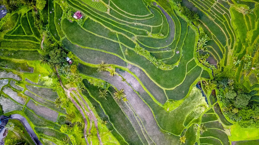 Najpiekniejsze miejsca na Bali-71