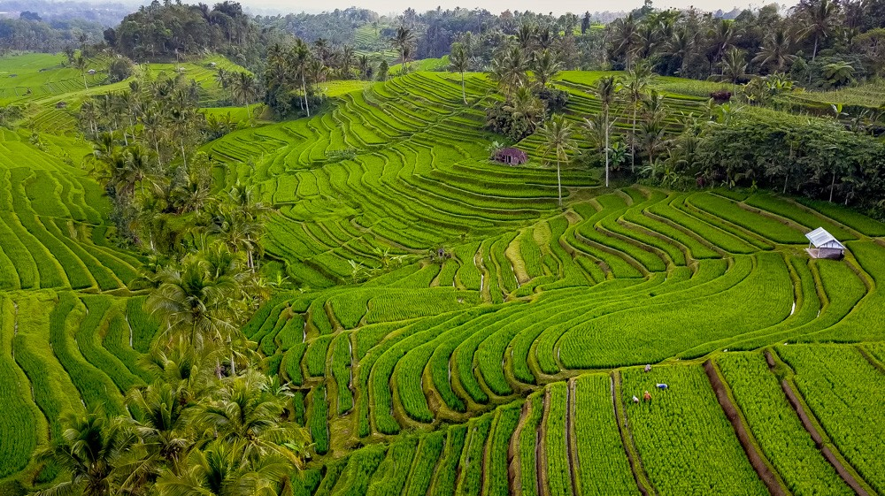 Najpiekniejsze miejsca na Bali-72