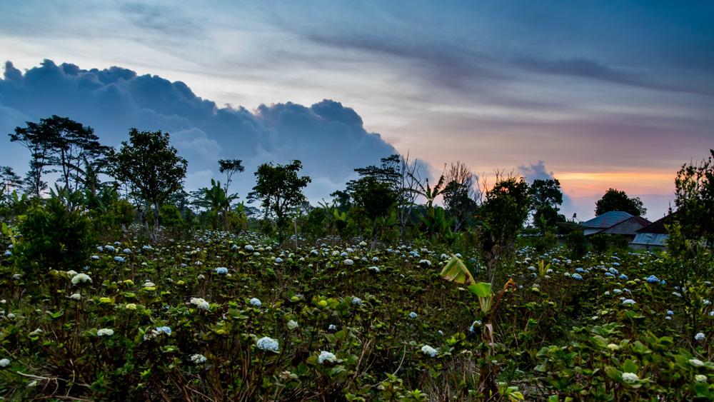 Najpiekniejsze miejsca na Bali-85