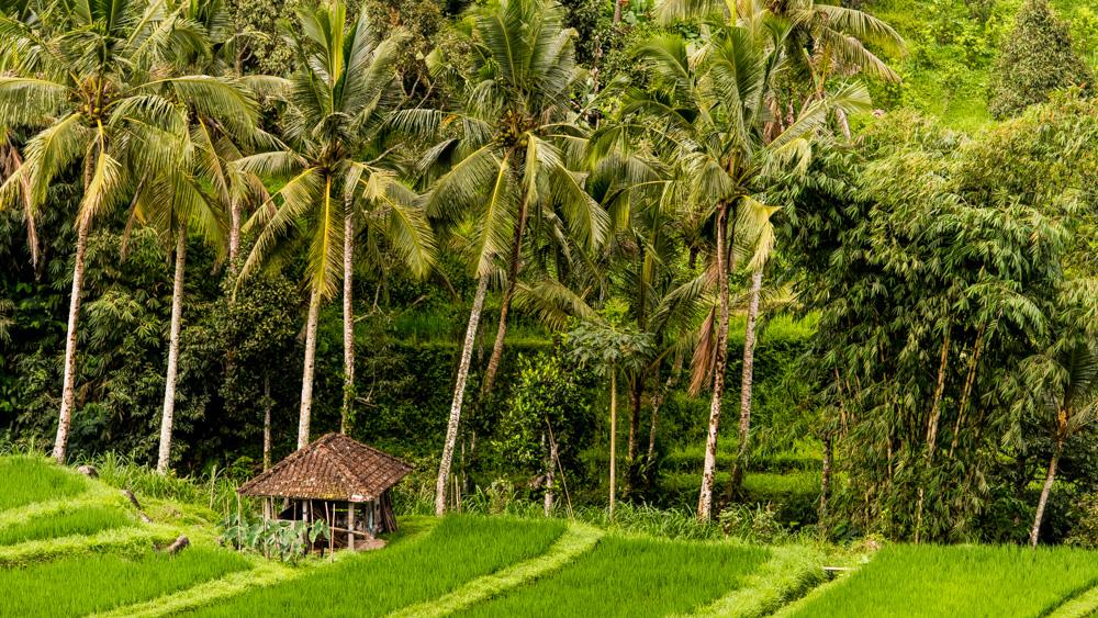 Najpiekniejsze miejsca na Bali-9