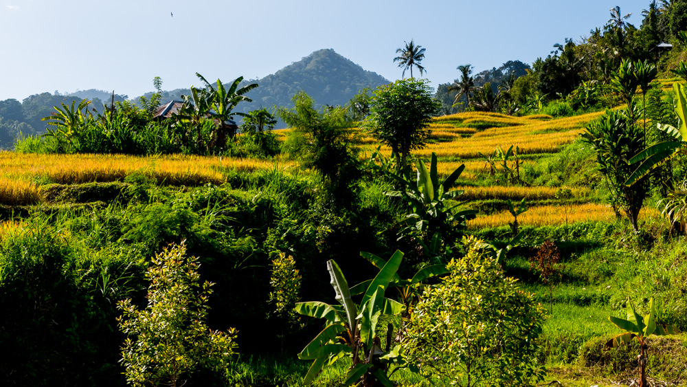 Secretne miejsca na Bali-3