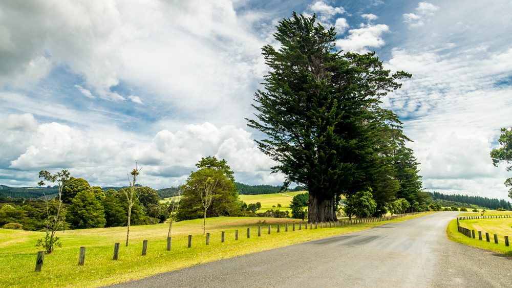 Nowa Zelandia informacje praktyczne-25