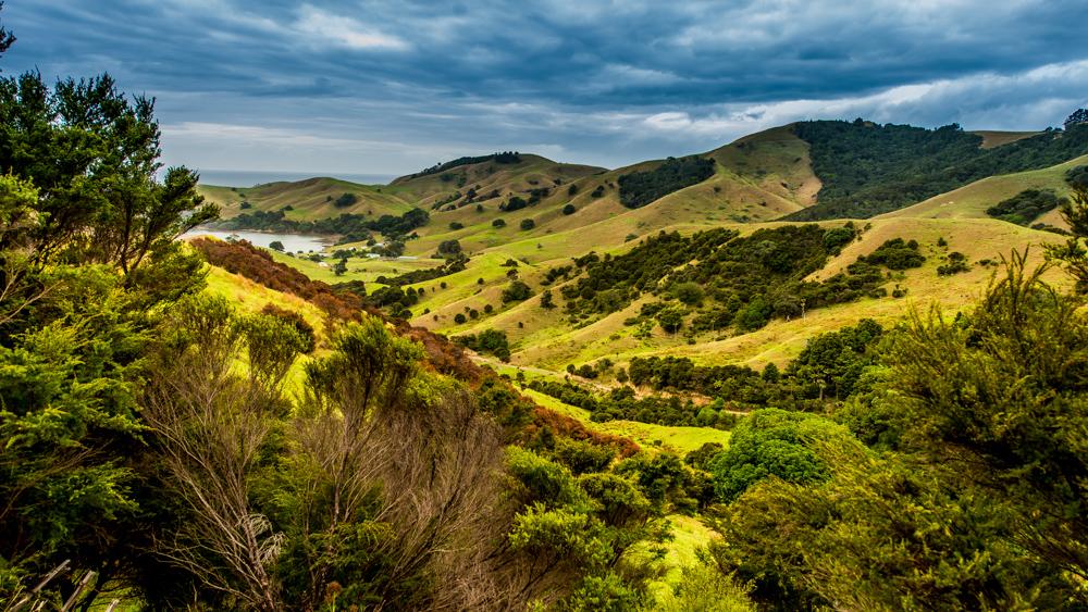 Nowa Zelandia najpiekniejsze drogi-5197