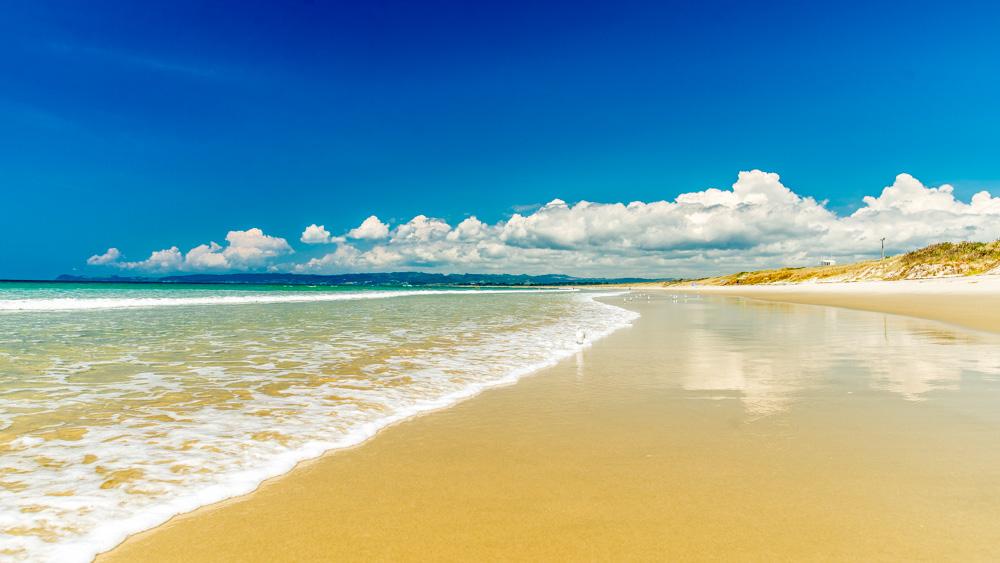 nowa-zelandia-bay-of-island-5