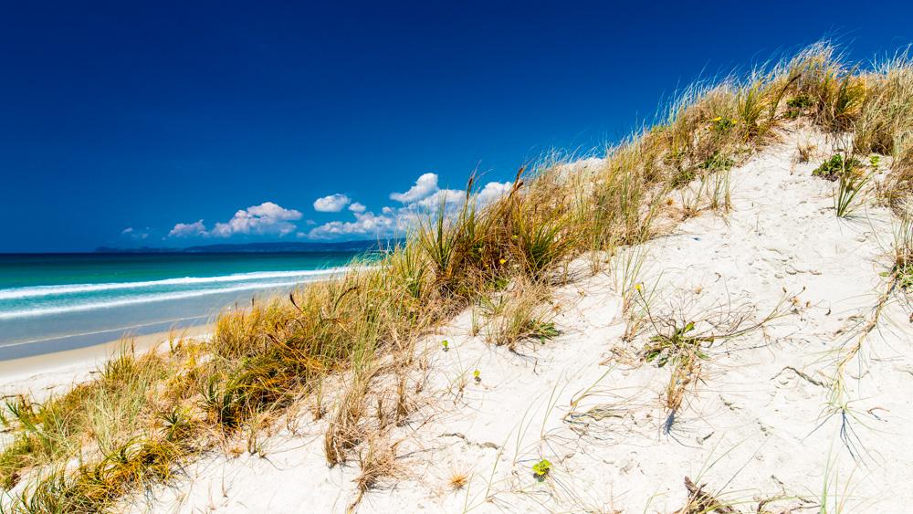 nowa-zelandia-bay-of-island-8