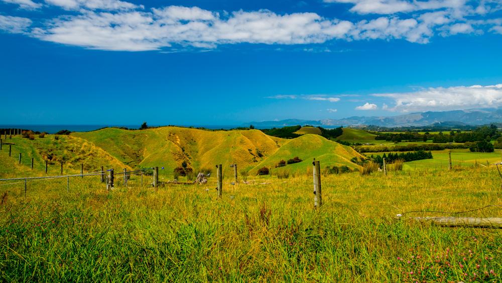 nowa-zelandia-abel-tasman-park-17
