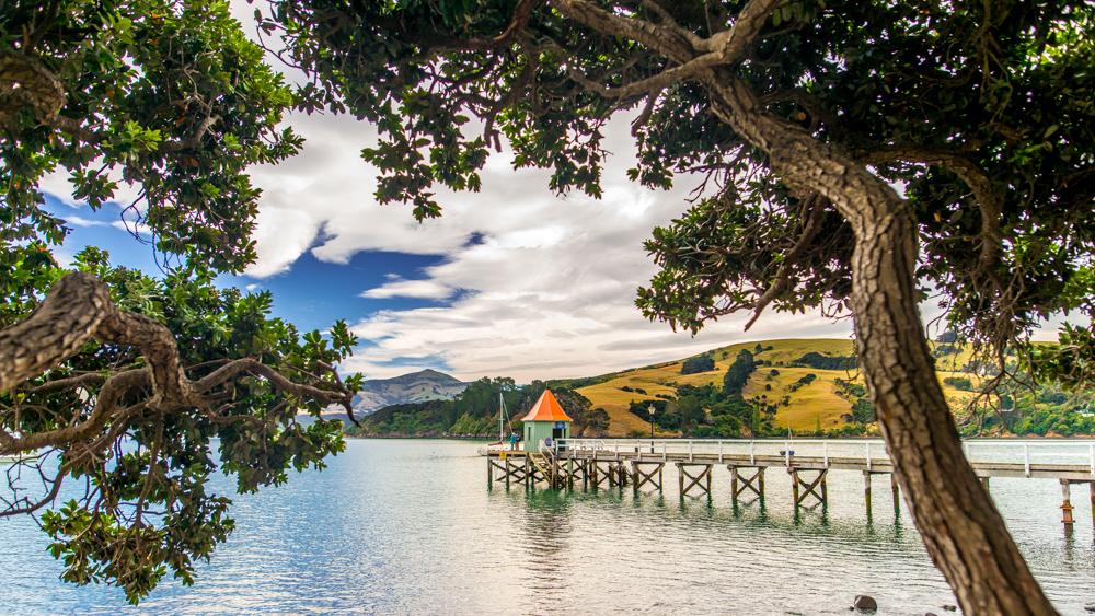 Nowa Zelandia Akaroa-9