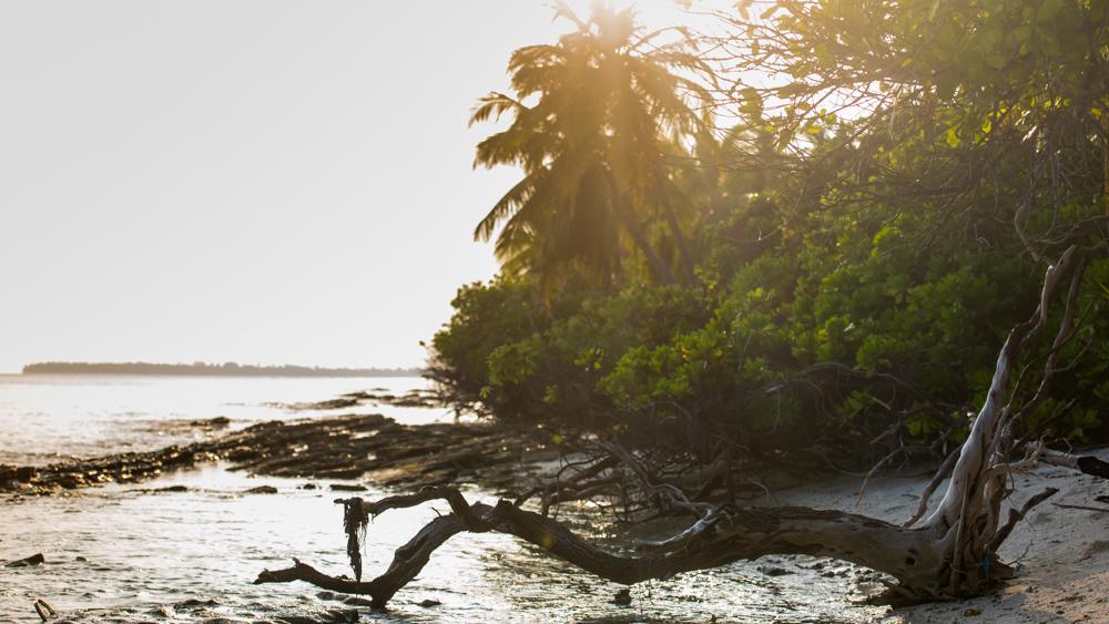 Malediwy-47