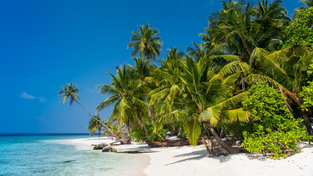 Malediwy-54