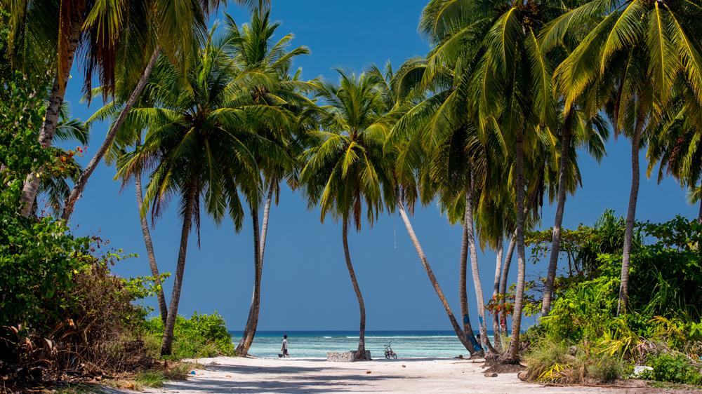 Malediwy-64