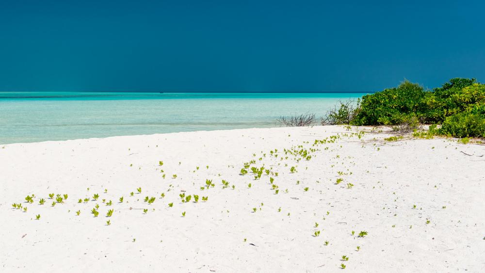 Malediwy Nilandhoo-31
